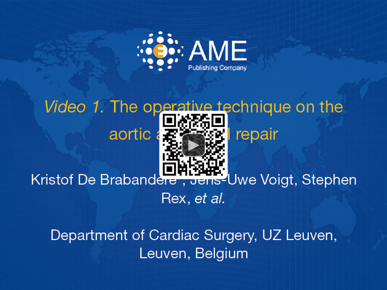 Aortic and mitral valve repair for anterior mitral leaflet